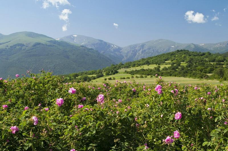 Долина роз, Казанлык