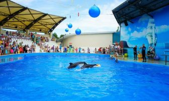 Дельфинарий Алушты