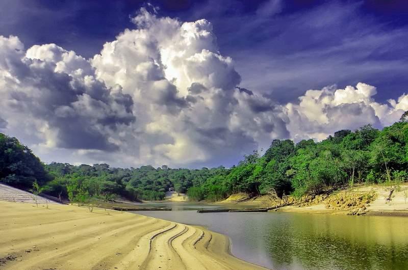 Амазония