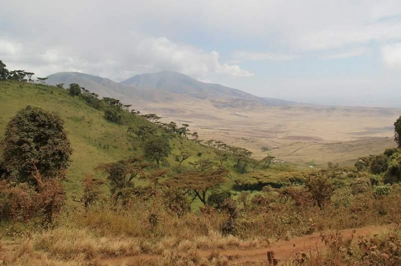 Национальный парк Нгоро-нгоро