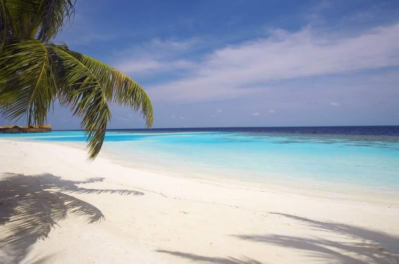 Атолл Ари, Мальдивы