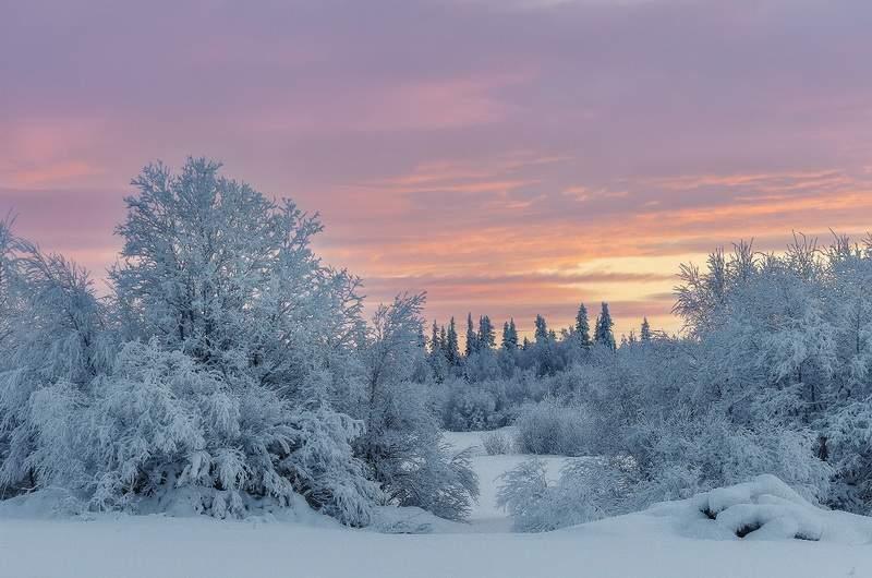 Кольский полуостров зимой