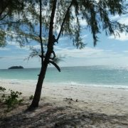 Monkey Island. Камбоджа