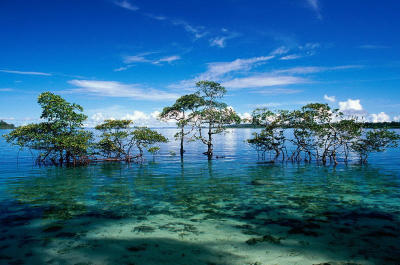 Лакшадвипские острова