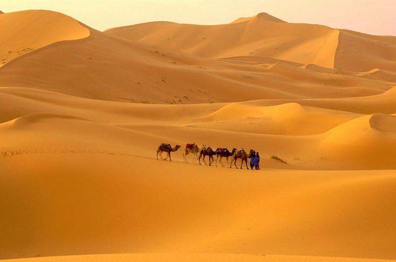 Пустыня Сахара