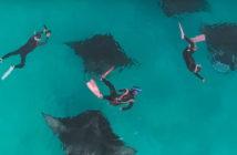 Подводная гавань острова Ханифару